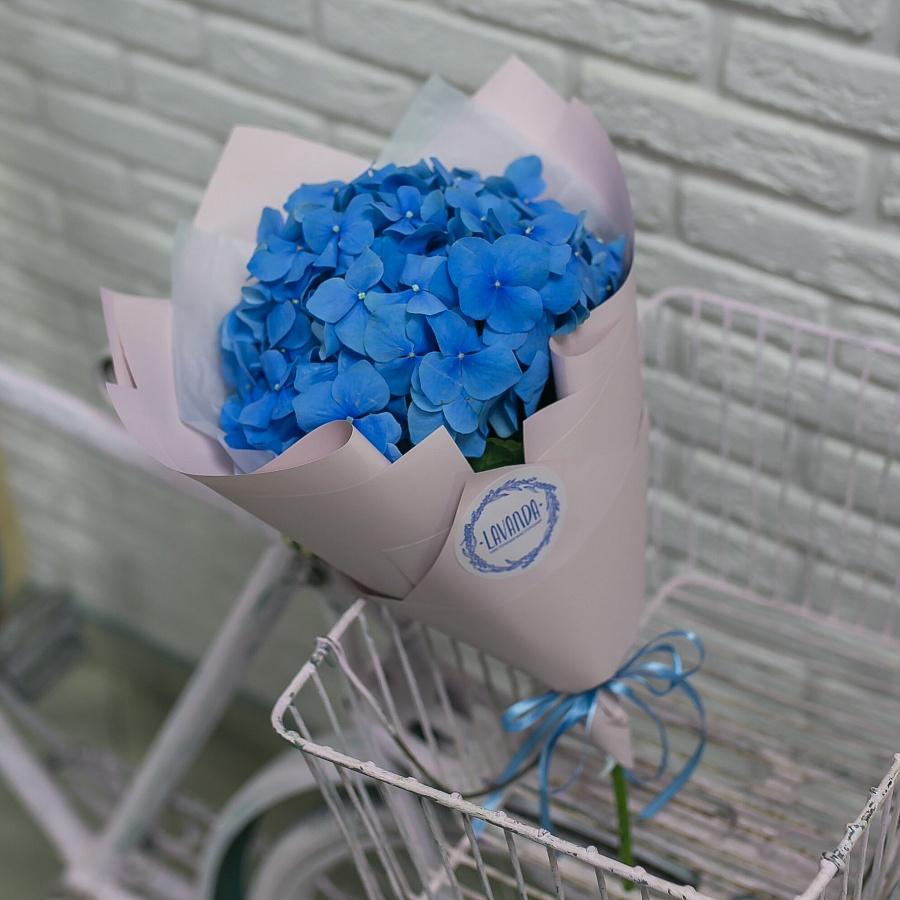 Синяя гортензия в стильной пленке