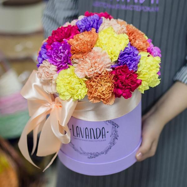 Разноцветные диантусы в коробке