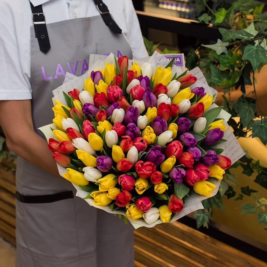 101 Голландский тюльпан в матовой пленке