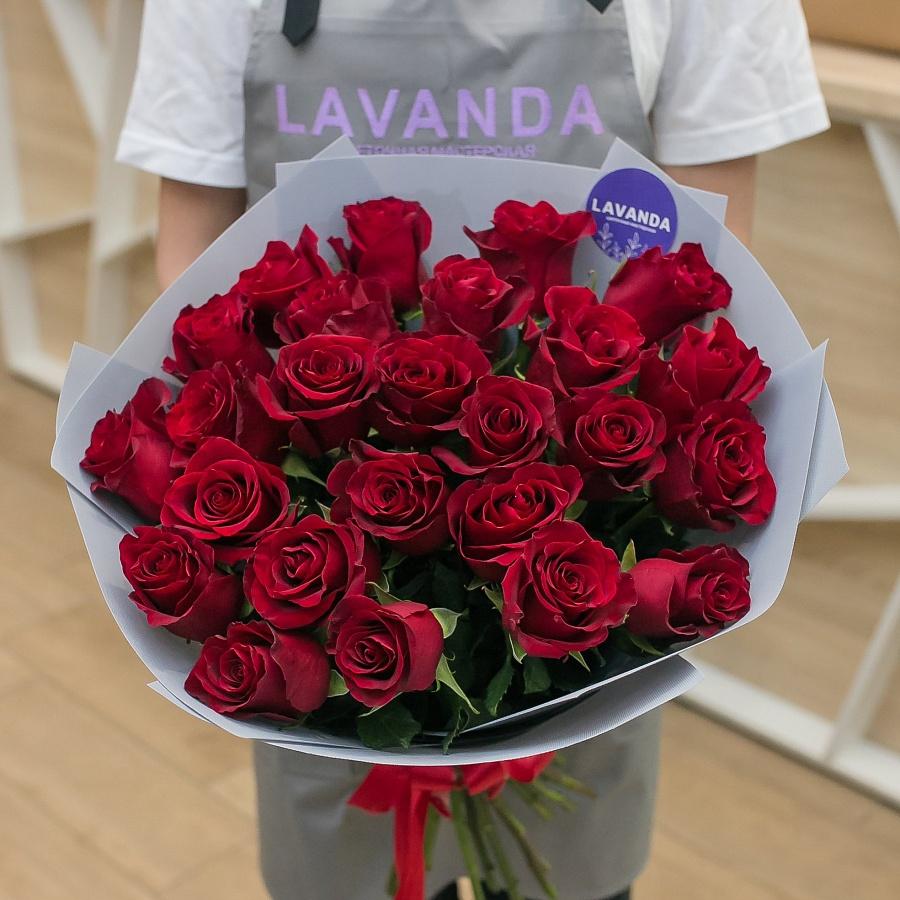 25 красных эквадорских роз 50 см.