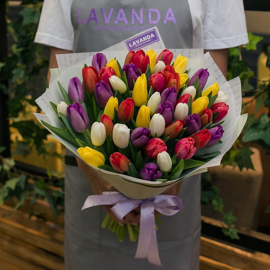 51 Голландский тюльпан в матовой пленке