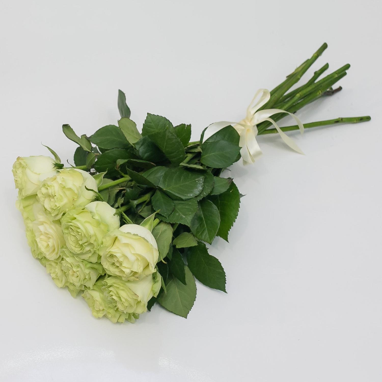 11 белых роз 50 см.