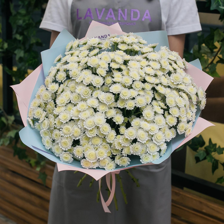 Букет ромашковой хризантемы Сталион
