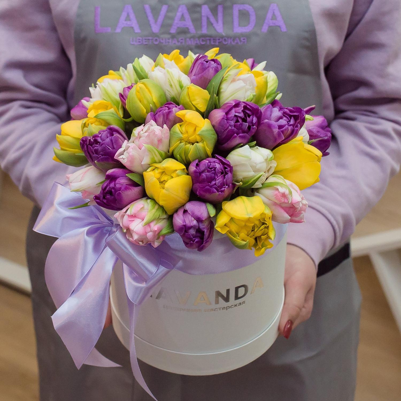 Коробочка пионовидных тюльпанов