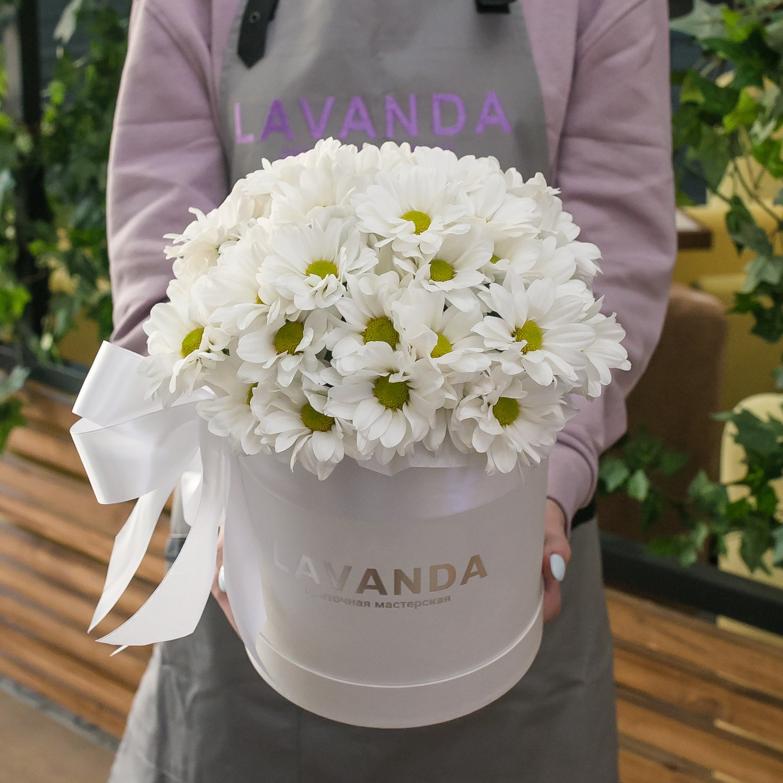 Коробочка белых ромашковых хризантем