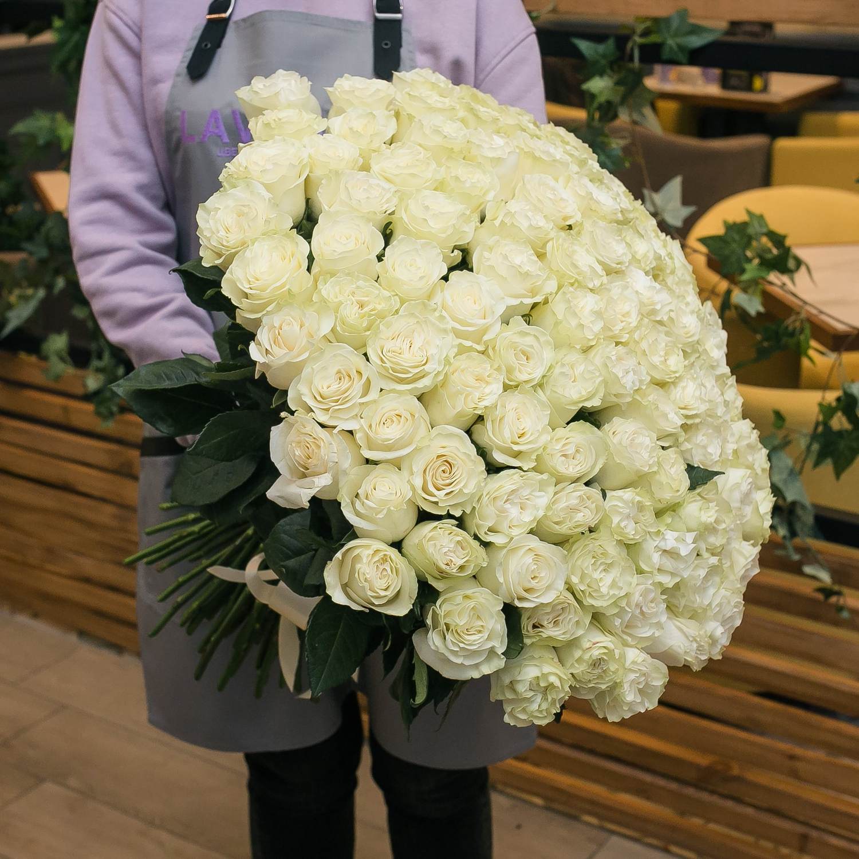 101 белая эквадорская роза 60 см.