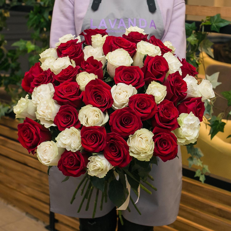 51 Эквадорская роза 60 см.